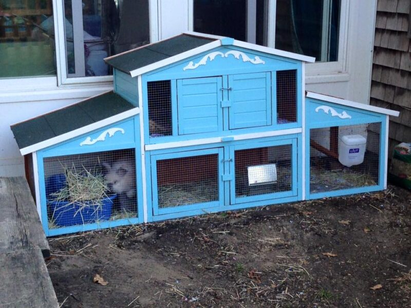 Embellishing a store bought rabbit hutch