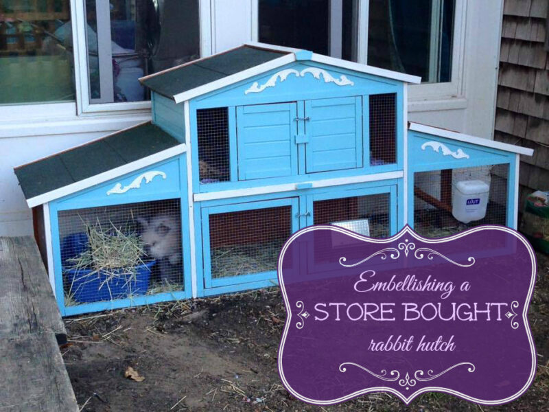 Embellishing a store bought rabbit hutch for How to make a rabbit hutch from scratch