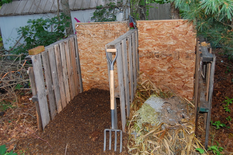 End of Season Clean Up & Cover Crops in your Garden