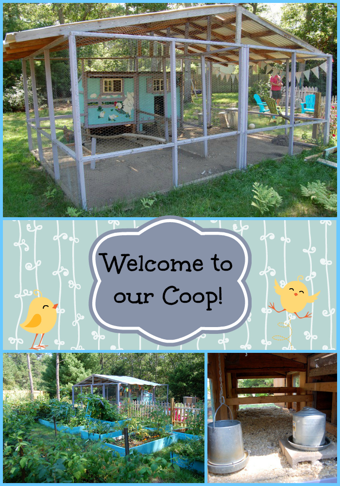 Welcome to our coop! Enjoy this photo tour of our chicken coop & get some ideas on what to do (and not do!) when building your own