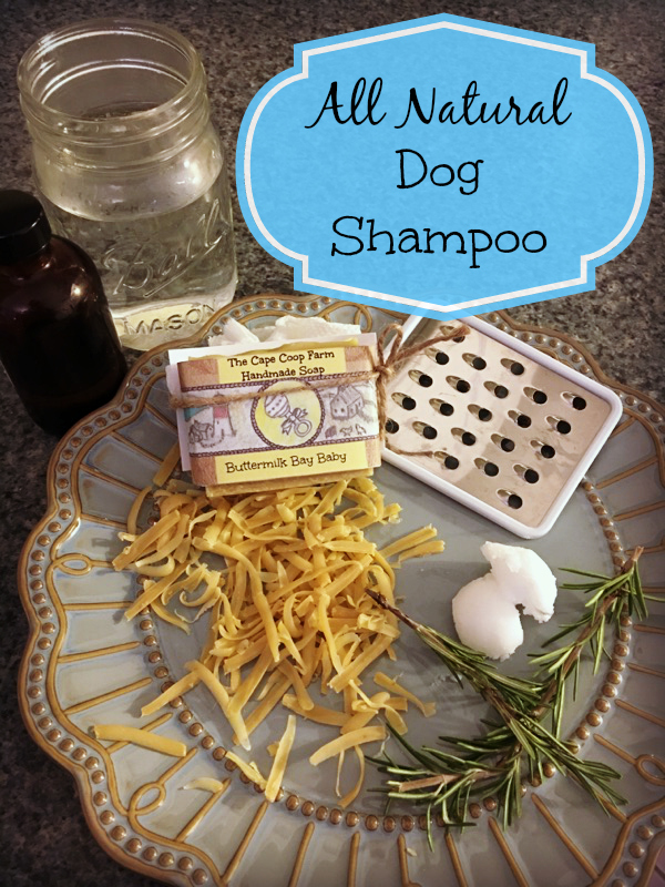 Ditch the chemicals for an all natural clean for your best friend!