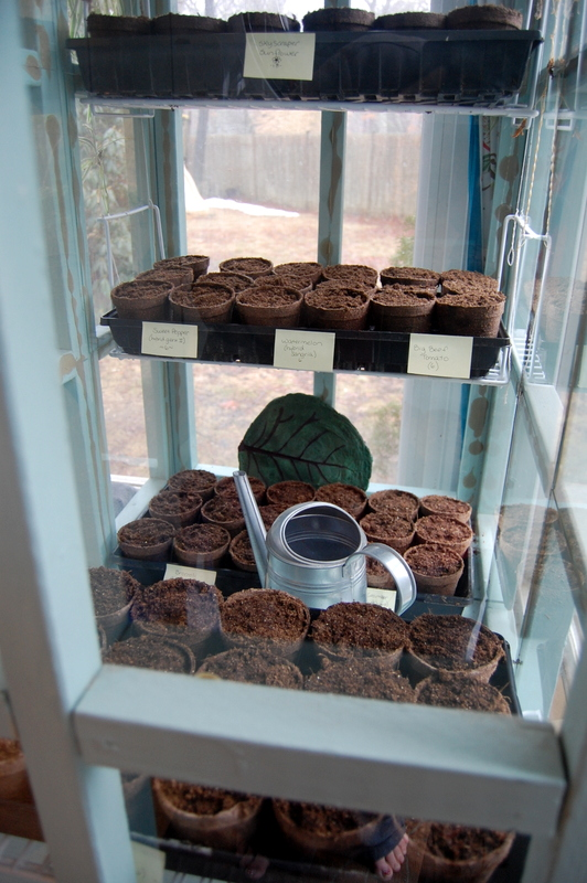 Recycling Old Picture Frames for an Indoor Greenhouse