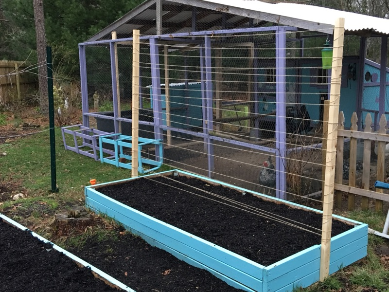 Make a garden trellis for under $5