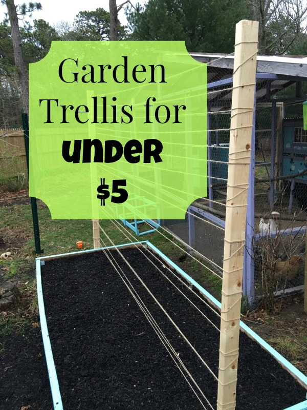 Raised Bed Trellis For Under 5 The Cape Coop