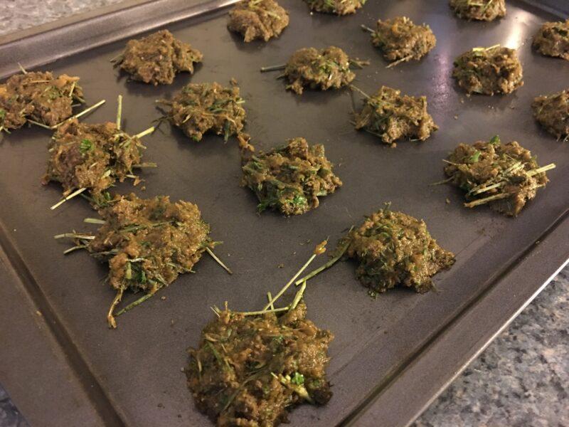 Homemade Rabbit Cookies