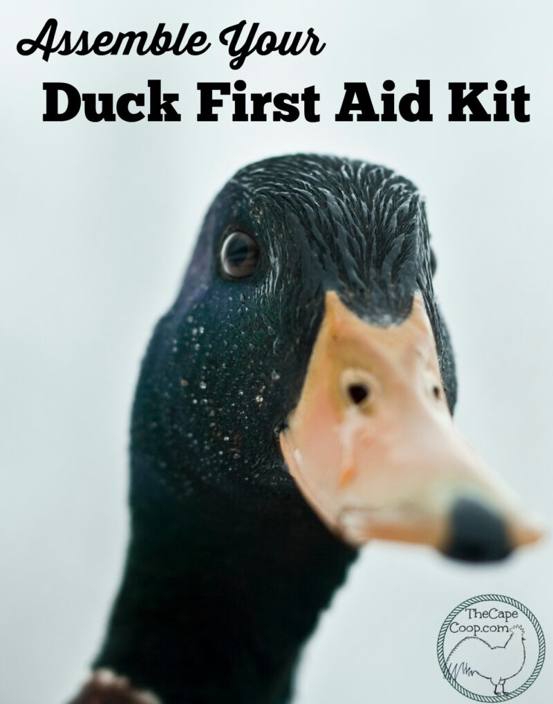 37956b2ab0a2 Duck First Aid Kit   Duck Health - The Cape Coop